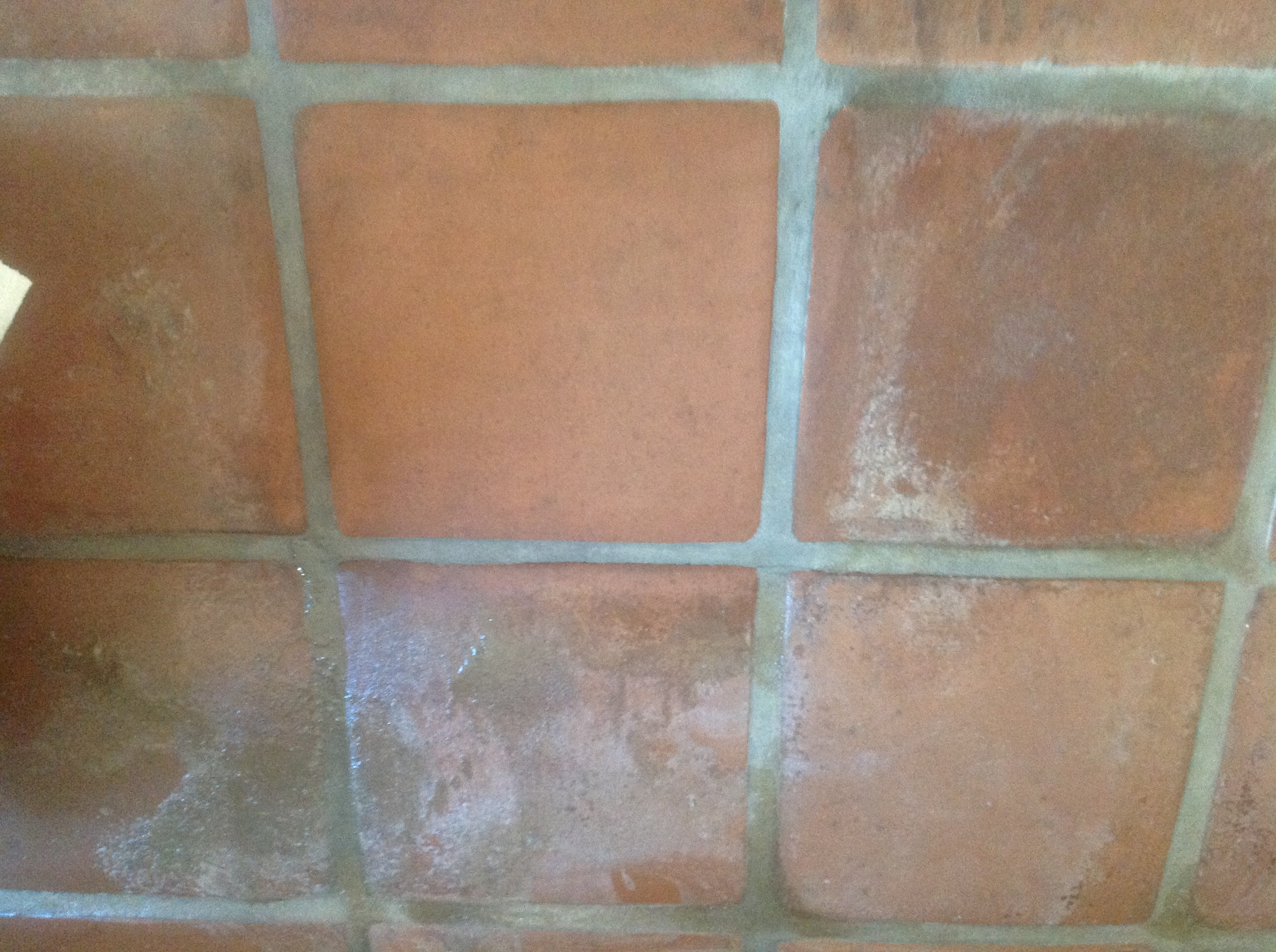 Efflorescence removal tile water damage california tile efflorescence removal tips for saltillo tile terracotta tile flagstone slate pavers and efflorescence prevention advice due to flooding and tile water dailygadgetfo Choice Image